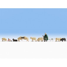 רועה צאן עם כבסים