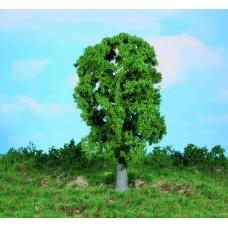 עץ אלון